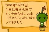 今日はこんな日3/21