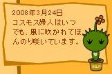 今日はこんな日3/24